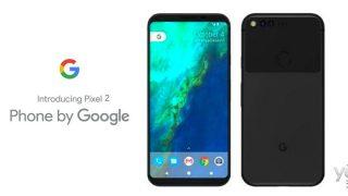 Авторитетный инсайдер показал живые фото Google Pixel 2